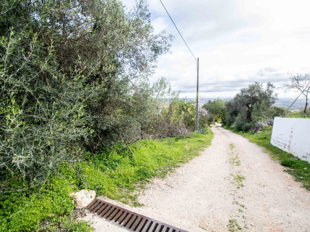 Land_for_sale_in_Loulé_SMA8919
