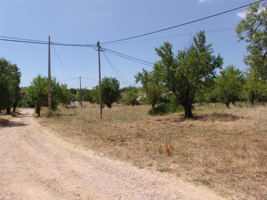 Rural Land_for_sale_in_Olhão_SMA8922