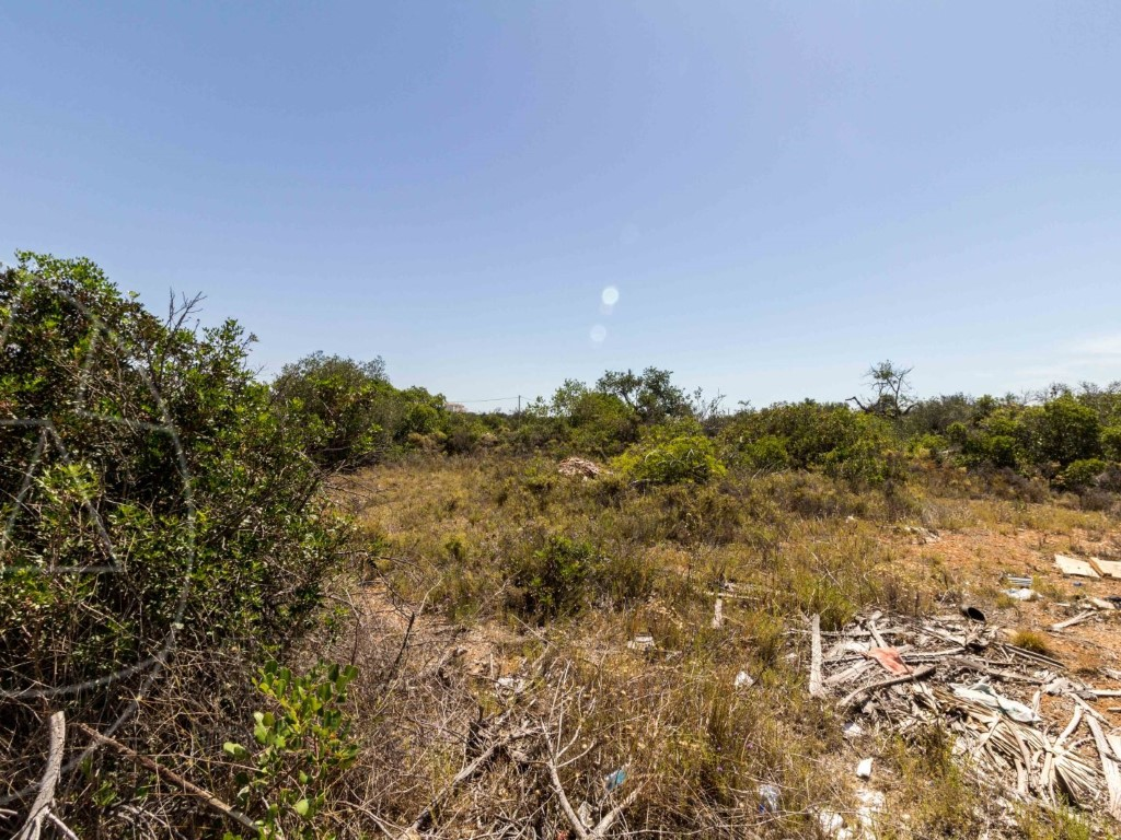 Rural Land_for_sale_in_Olhão_SMA8923