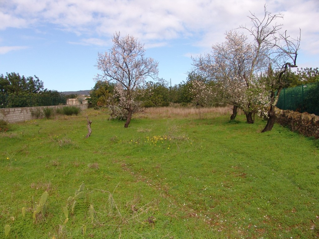 Land_for_sale_in_Faro_SMA9034
