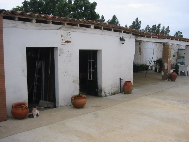 Villa_for_sale_in_Obidos_LBA984