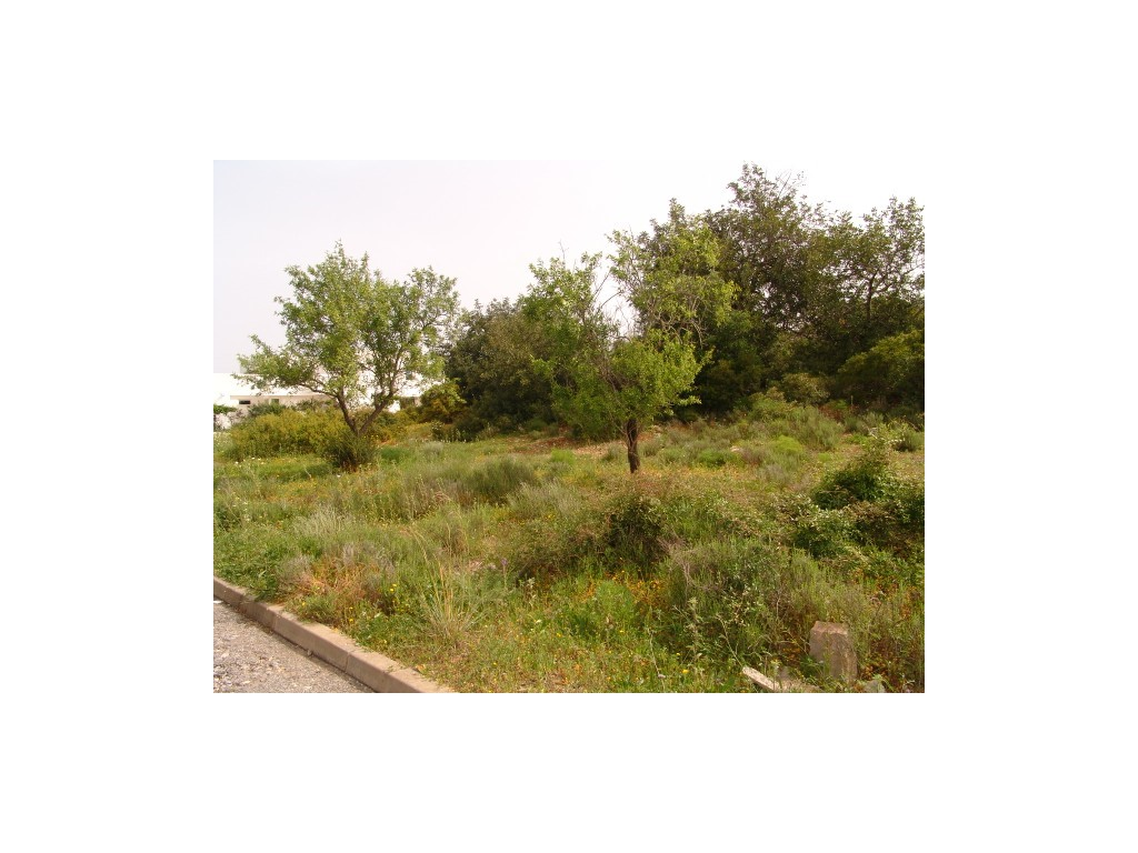Plot_for_sale_in_Fornalha (Moncarapacho)_sma10569