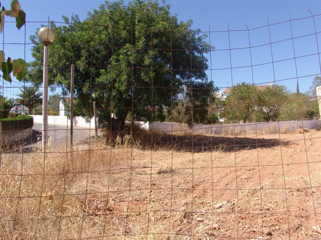 Urban Land for sale in Goncinha sma10880