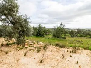 Land_for_sale_in_Valados_sma11290
