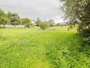 Land_for_sale_in_Loule_sma11536