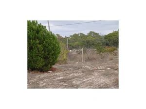 Mixed Land_for_sale_in_Gambelas_sma11540