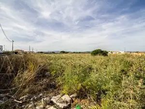 Urban_Land_for_sale_in_Marchil_(São_Pedro)_SMA11712