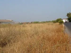 Mixed_Land_for_sale_in_Faro_SMA11715