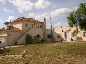 Investimento_for_sale_in_Central_Algarve_EMA12212