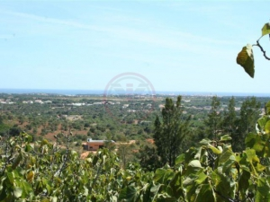 _for_sale_in_Loule (Sao Sebastiao)_ldo12220