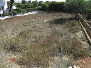 Land te koop in Quarteira ldo12360