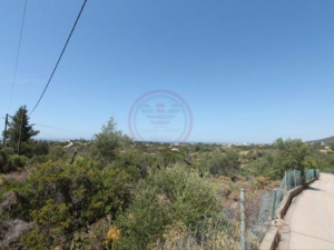 _for_sale_in_Santa Barbara De Nexe_ldo12363