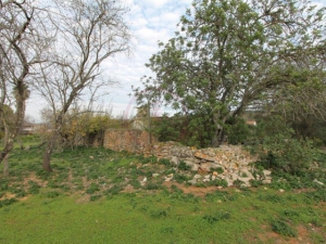 Land for sale in Loule (Sao Sebastiao) ldo12546