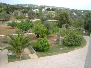 _for_sale_in_Loule (Sao Clemente)_ldo12622