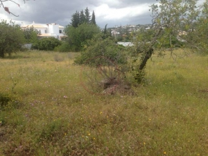 Land for sale in Almancil ldo12659