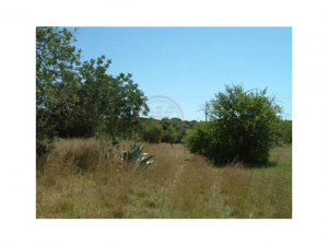 Land te koop in Almancil ldo12668