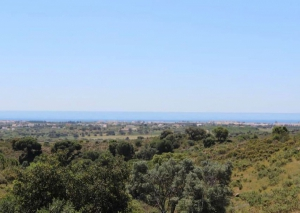 Land te koop in Tavira ema12760
