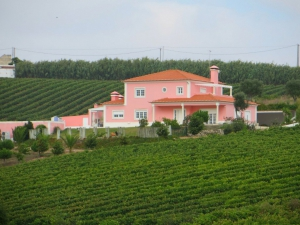 Country House_for_sale_in_Torres Vedras_sma12868