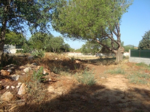 Land_for_sale_in_Almancil_sma13012