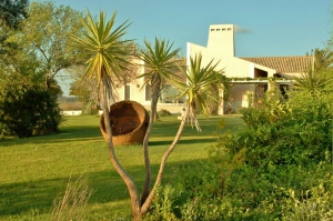 Equestrian Property_for_sale_in_Evora_sma13024