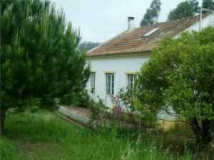 Country House_for_sale_in_Obidos_sma13111