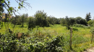 Land_for_sale_in_Albufeira_sma13120