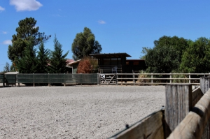 Equestrian Property_for_sale_in_Tavira_sma13176