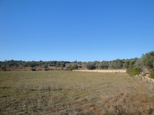 Land_for_sale_in_Portimao_sma13245