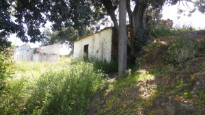 Ruin_for_sale_in_Tavira_sma13363