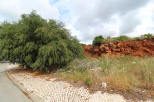 Land for sale in Loule sma13379