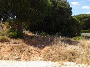 Land for sale in Albufeira sma13551