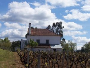 Country House_for_sale_in_Ferreira_do_Zezere_PCO356