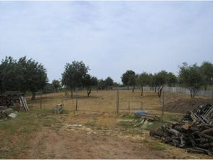 Land for sale in Ferreiras vpa3979