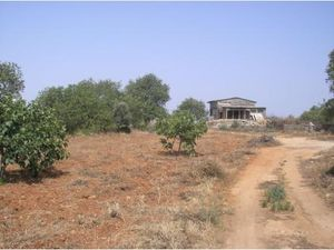 Land te koop in Ferreiras vpa4052