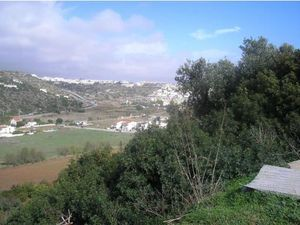 Forestry for sale in Albufeira vpa4107