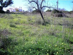 Land for sale in Guia vpa4125