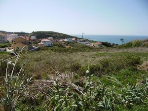 Land_for_sale_in_Sao Martinho do Porto_PJA6247