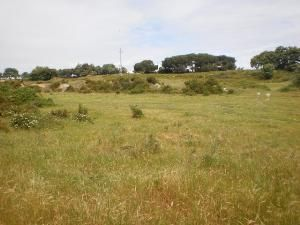 Land_for_sale_in_Lisboa_FLO6669