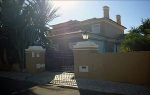 Villa_for_sale_in_na_FLO7303