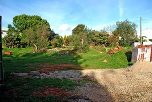 Land_for_sale_in_Birre - Cascais_FLO7543