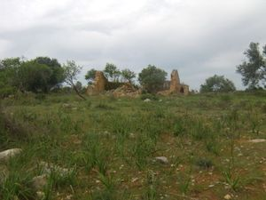 Land for sale in Paderne sma7887