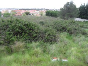 Land_for_sale_in_Sintra_sli8005