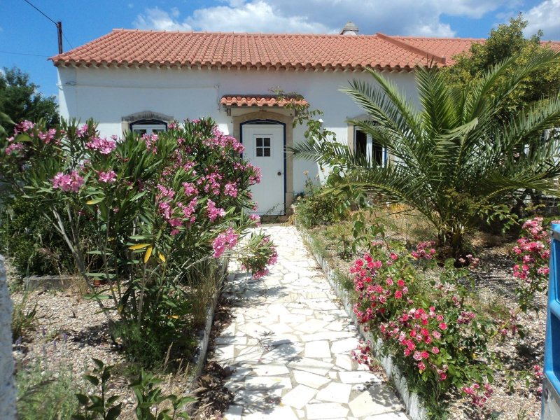 Country House_for_sale_in_S. Pedro de Tomar_sli8237