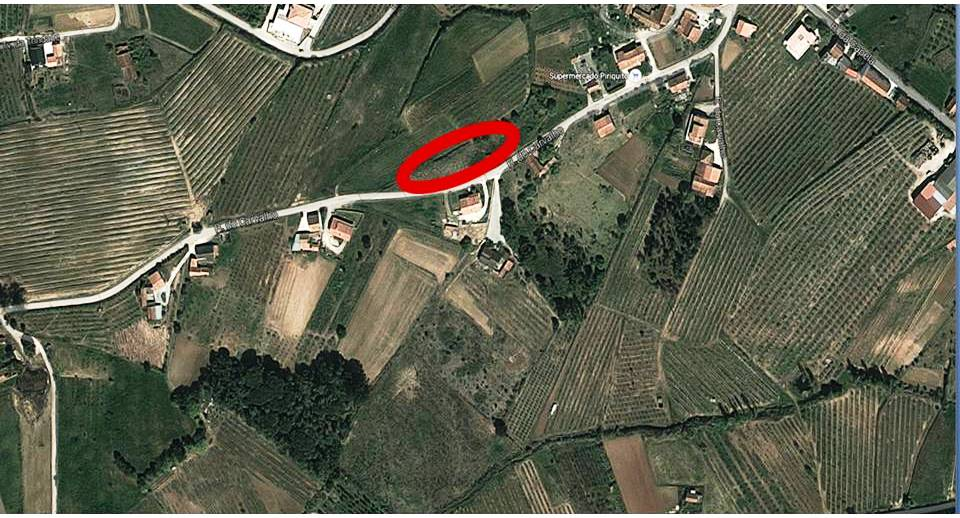 Land_for_sale_in_Alcobaca_SCO8243
