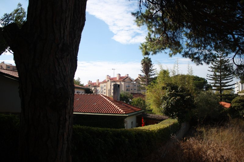 Land_for_sale_in_Cascais_sli8351
