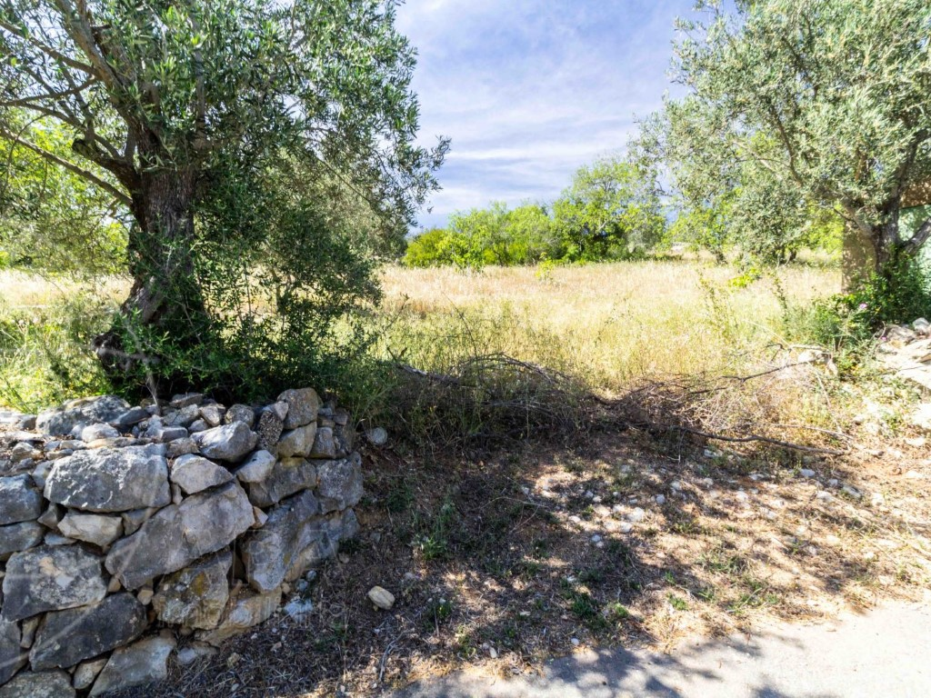 Rural Land_for_sale_in_Goldra_sma8914