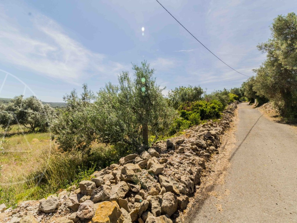 Rural Land_for_sale_in_Goldra_sma8915