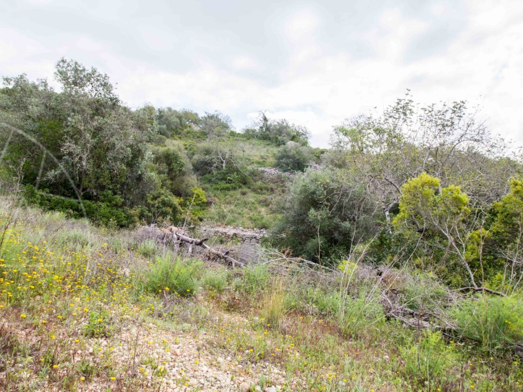 Rural Land_for_sale_in_Faro_sma8916