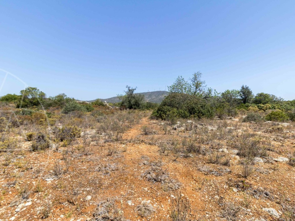 Rural Land_for_sale_in_Alecrineira_sma8923