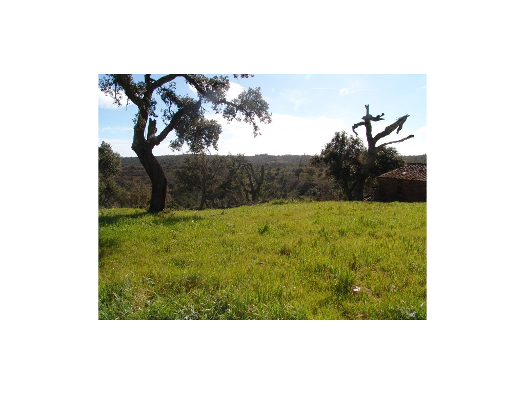Land_for_sale_in_Sao-Bras-de-Alportel_sma8924